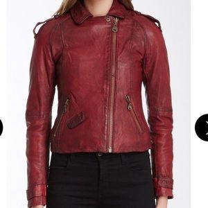 Burnt Burgundy Doma Leather Moto Jacket